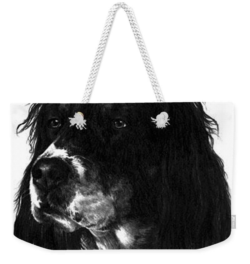 Portrait Weekender Tote Bag featuring the drawing Sadie by Rachel Christine Nowicki