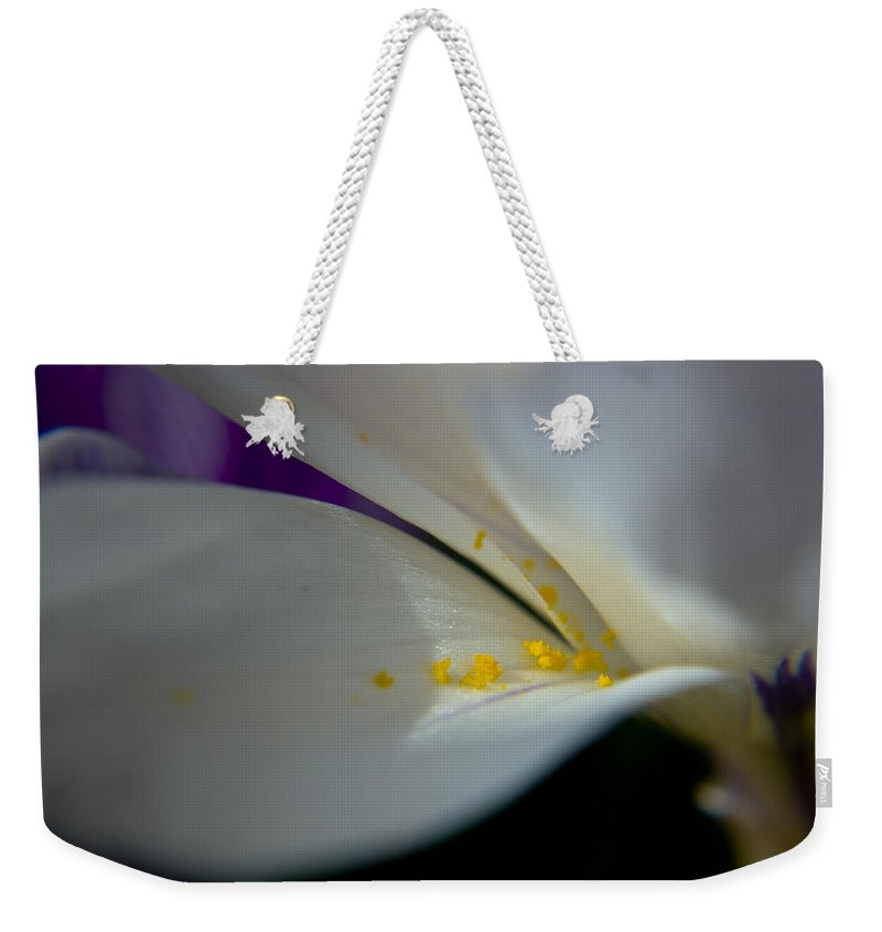 Safron Weekender Tote Bag featuring the photograph Safron by Teresa Mucha