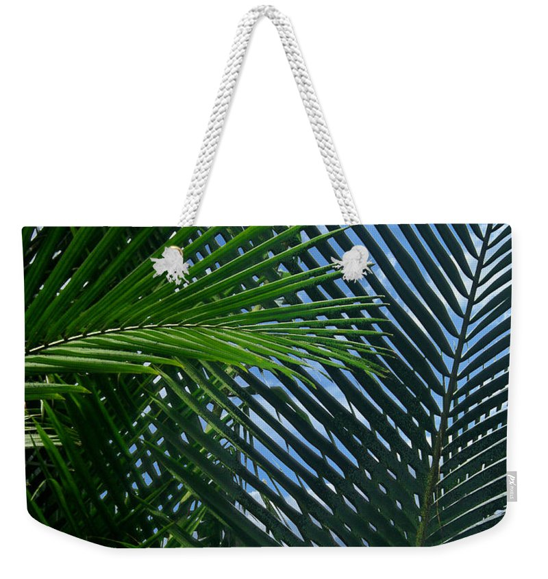 Indonesia Weekender Tote Bag featuring the photograph Sago Palm Fronds by Mark Sellers