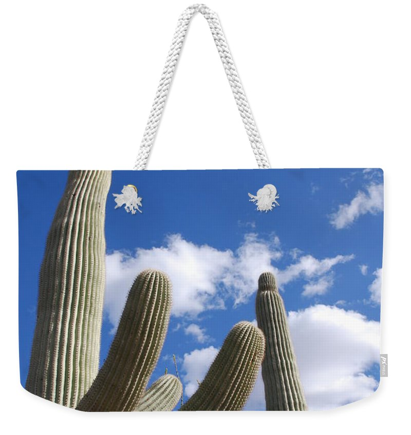 Photography Weekender Tote Bag featuring the photograph Saguaro Cacti by Susanne Van Hulst