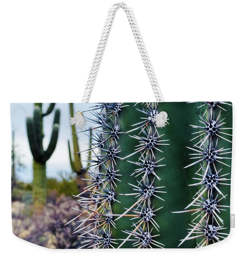 Saguaro National Park Weekender Tote Bag featuring the photograph Saguaro National Park Portrait by Kyle Hanson