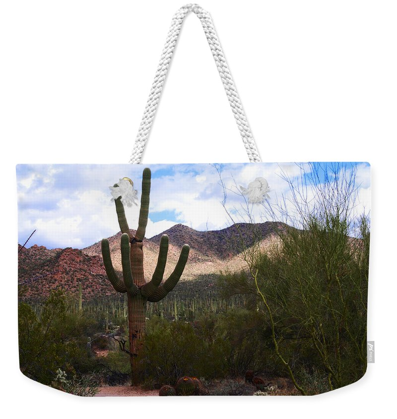 Photography Weekender Tote Bag featuring the photograph Saguaro National Park by Susanne Van Hulst