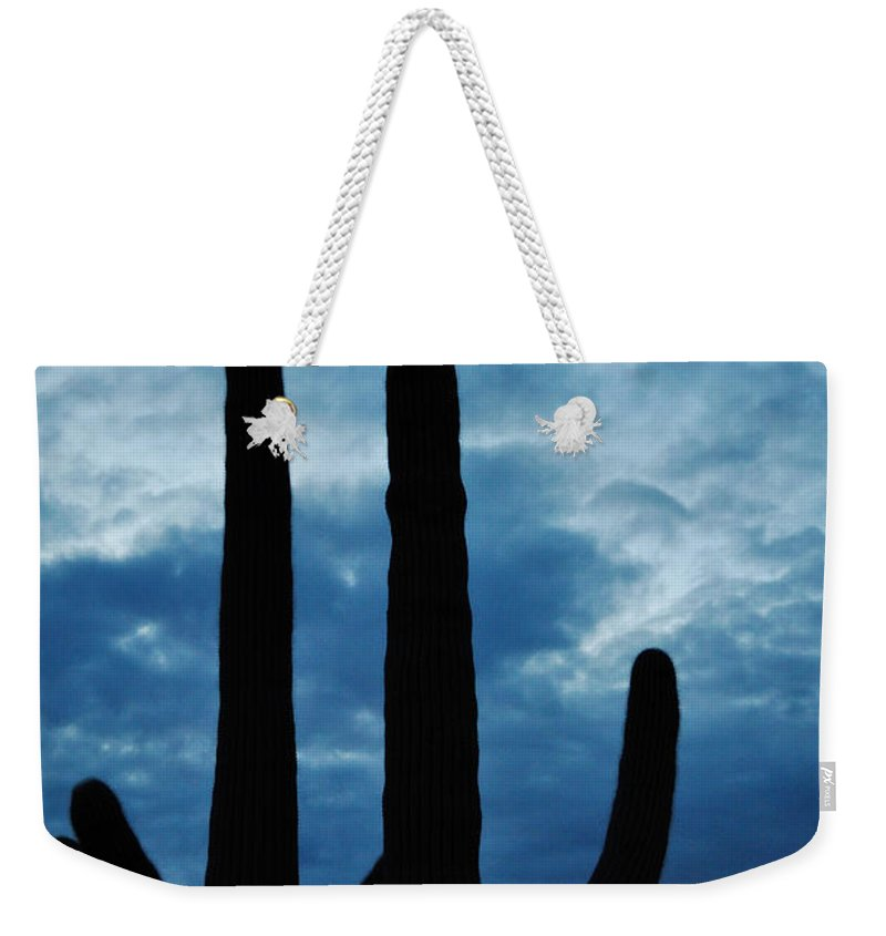 Saguaro National Park Weekender Tote Bag featuring the photograph Saguaro Nights by Kyle Hanson