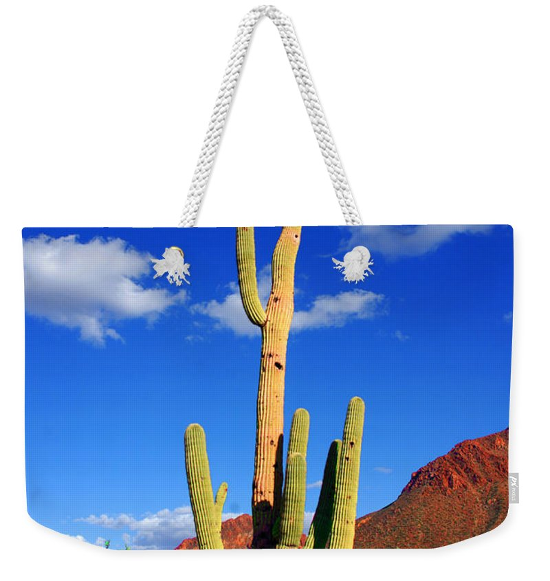 Photography Weekender Tote Bag featuring the photograph Saguaro Np by Susanne Van Hulst