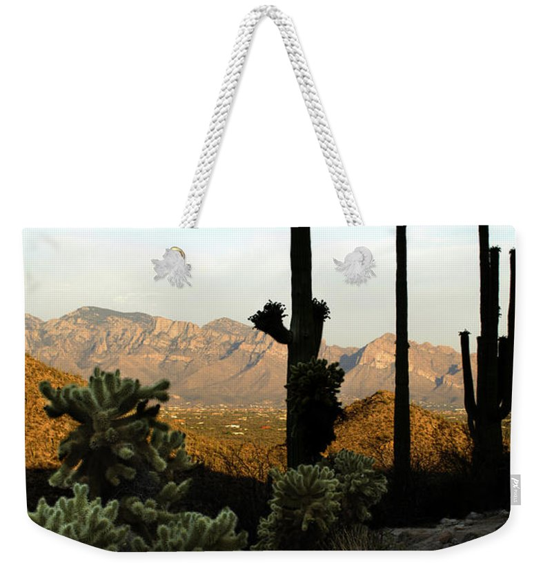 Saguaro Weekender Tote Bag featuring the photograph Saguaro Silhouette by Jill Reger