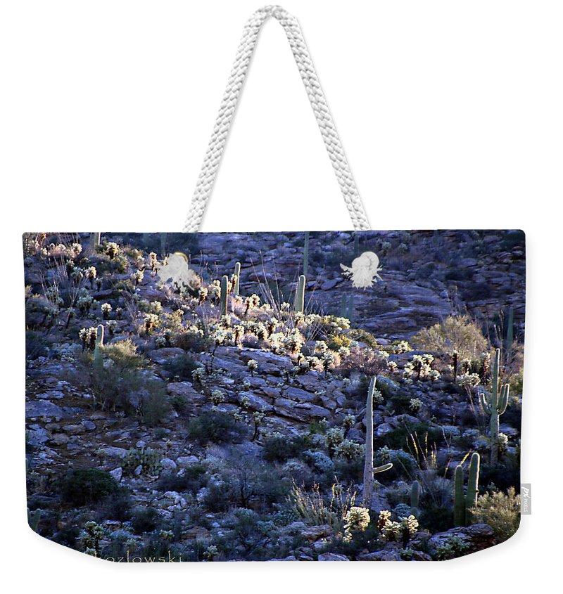 Cactus Weekender Tote Bag featuring the photograph Saguaro Sunrise by Joe Kozlowski
