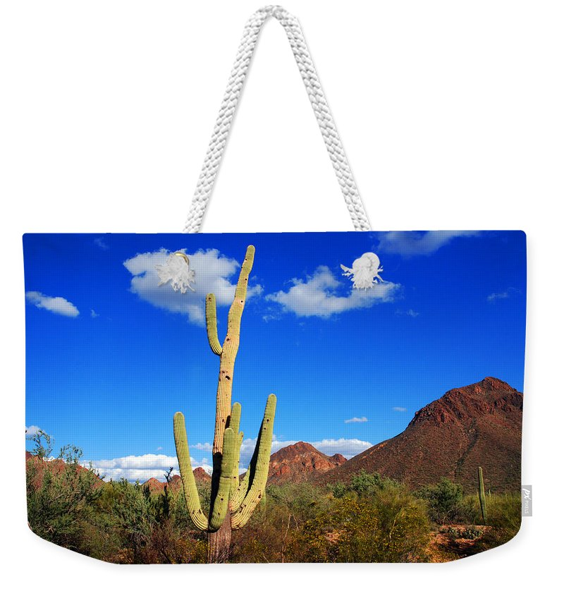 Photography Weekender Tote Bag featuring the photograph Saguaro Tree by Susanne Van Hulst
