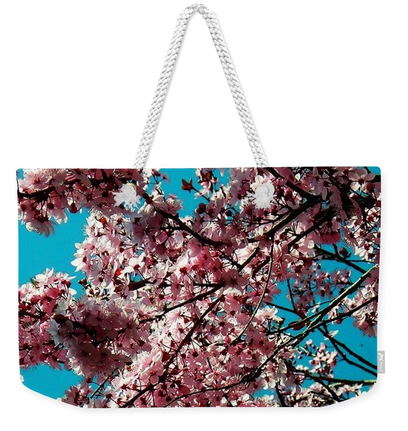Fruehling Weekender Tote Bag featuring the photograph Sakura by Juergen Weiss