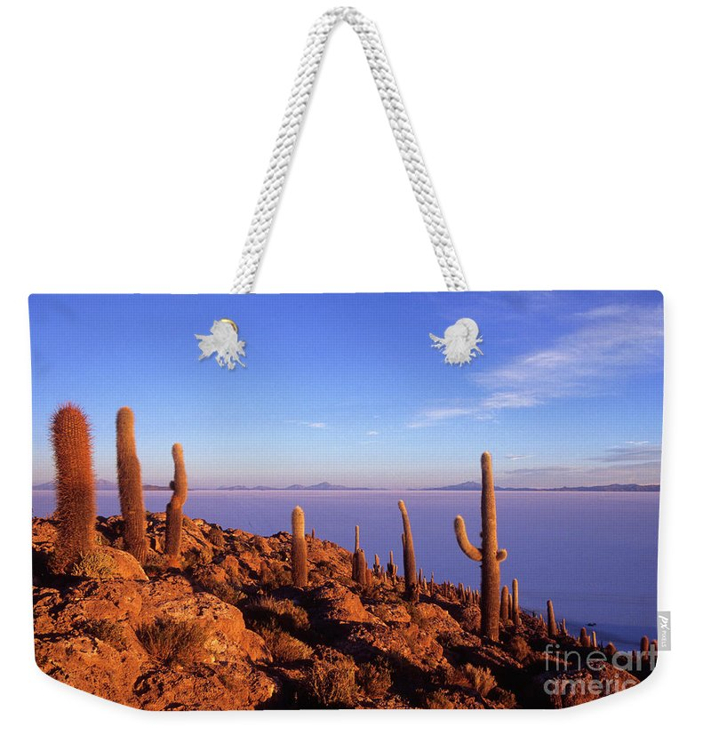 Bolivia Weekender Tote Bag featuring the photograph Salar De Uyuni And Cacti At Sunrise by James Brunker