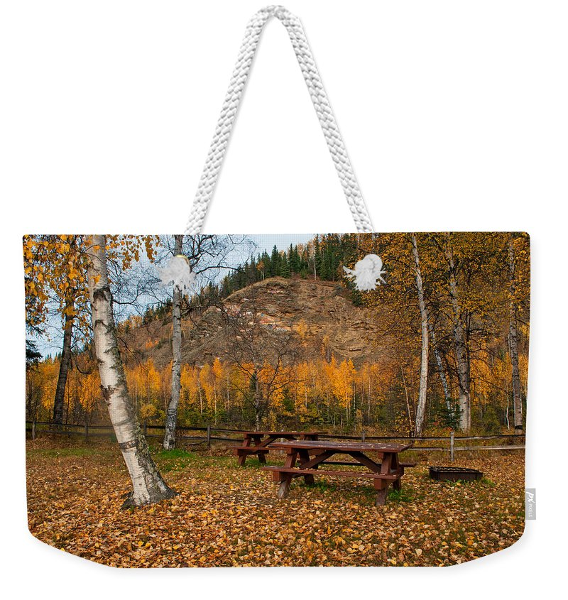 Alaska Weekender Tote Bag featuring the photograph Salcha River Recreation Area by Cathy Mahnke