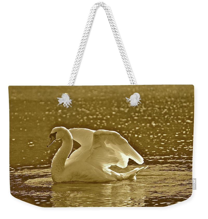 Swan Weekender Tote Bag featuring the photograph Sam by Diana Hatcher