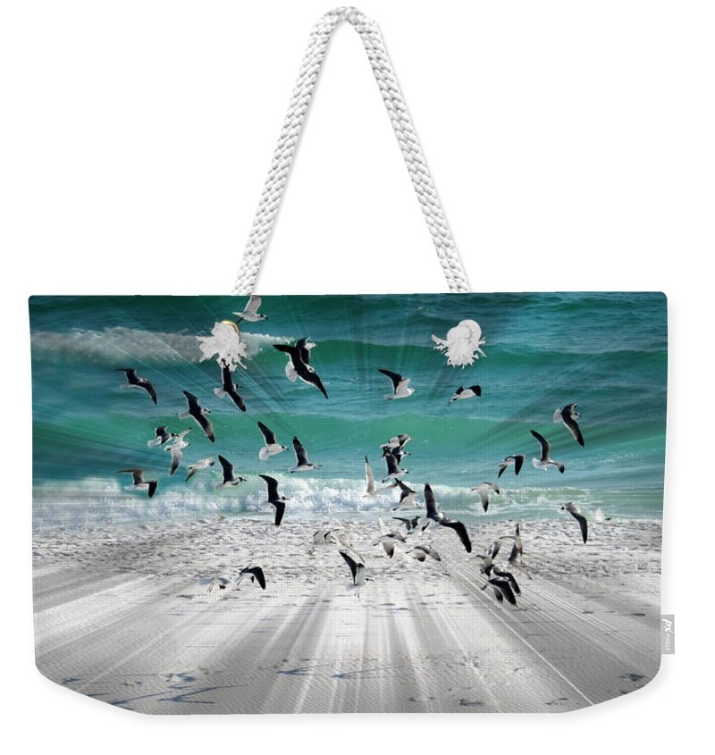 Sandestin Beach Weekender Tote Bag featuring the photograph Sandestin Seagulls C by Roe Rader
