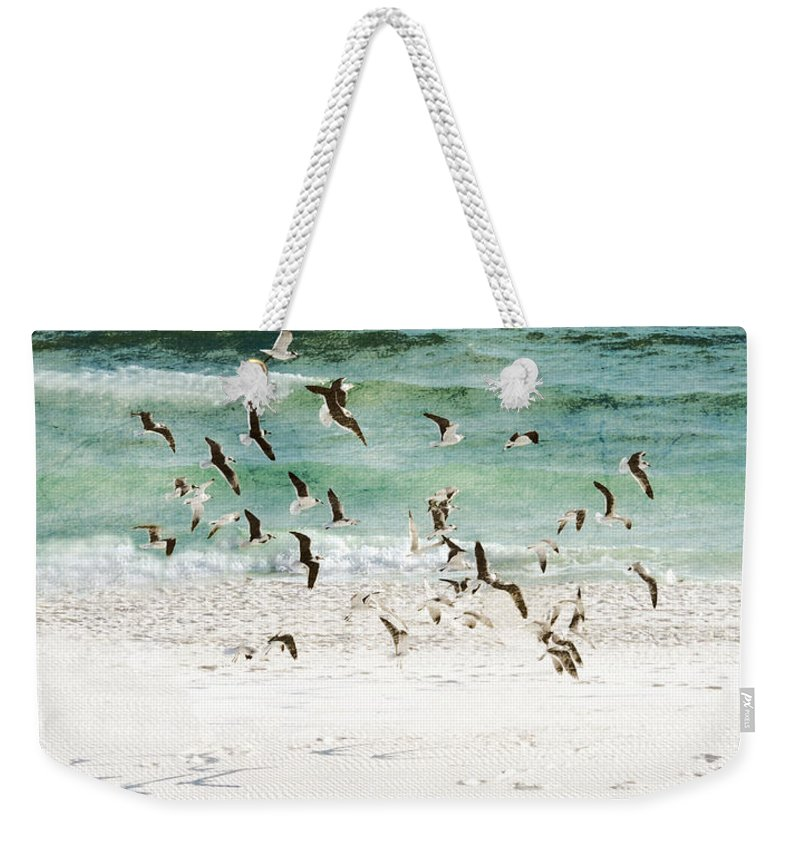 Sandestin Beach Weekender Tote Bag featuring the photograph Sandestin Seagulls D by Roe Rader