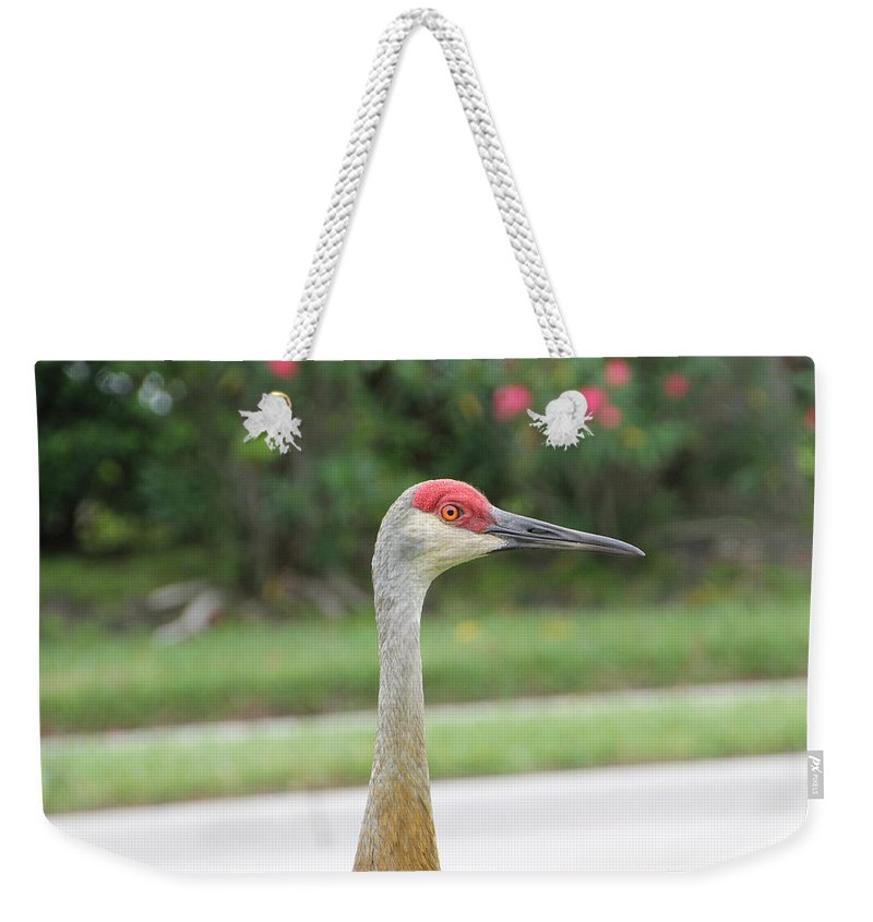 Green Weekender Tote Bag featuring the photograph Sandhill Crane In Sarasota by Laura Martin