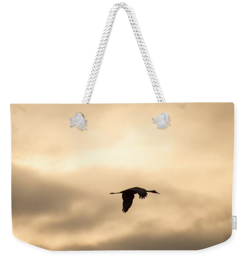 Sweet Weekender Tote Bag featuring the photograph Sandhill Crane Silhouette Flying by Deb Fedeler