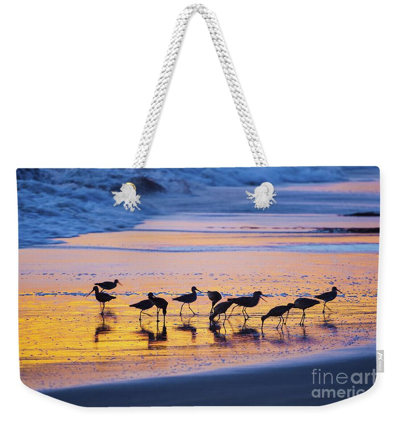Group Weekender Tote Bag featuring the photograph Sandpipers In A Golden Pool Of Light by Sharon Foelz