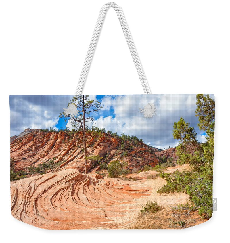 Landscape Weekender Tote Bag featuring the photograph Sandstone Carvings by John M Bailey