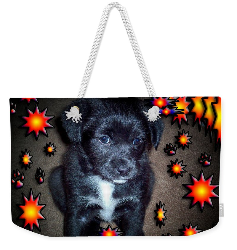 Puppy Weekender Tote Bag featuring the photograph Sasha by Robert Orinski