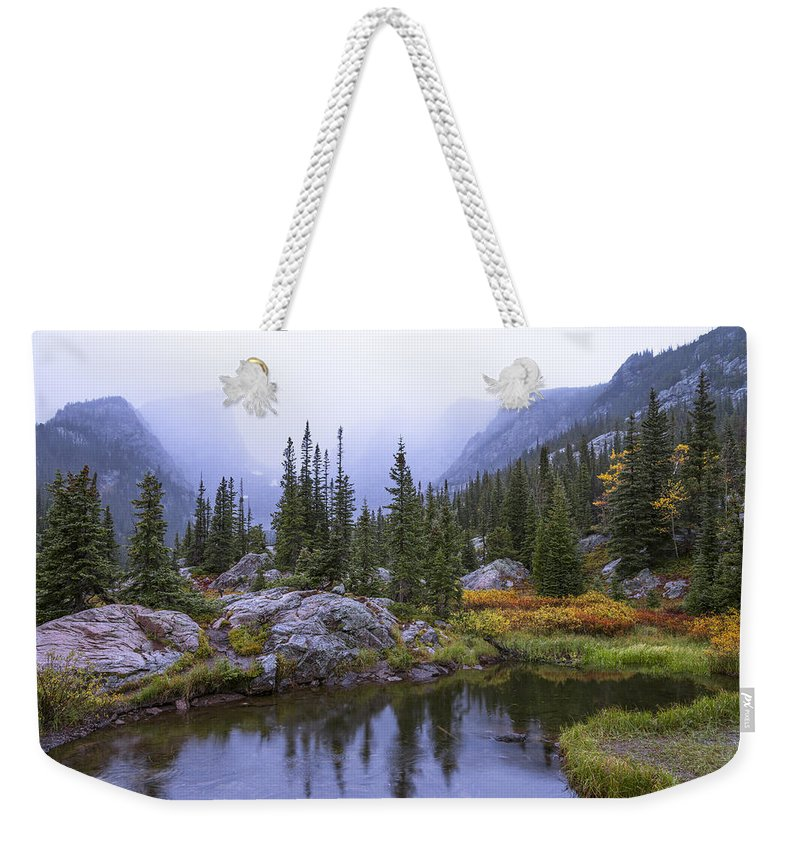 Saturated Forest Weekender Tote Bag featuring the photograph Saturated Forest by Chad Dutson