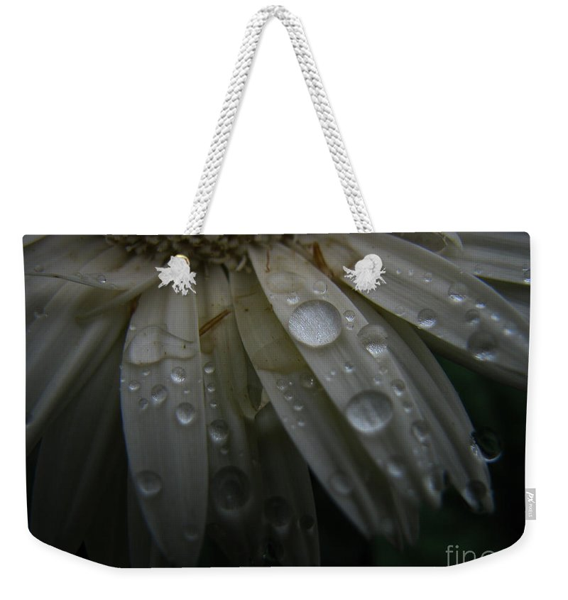 Daisy Weekender Tote Bag featuring the photograph Saturation by Amanda Barcon