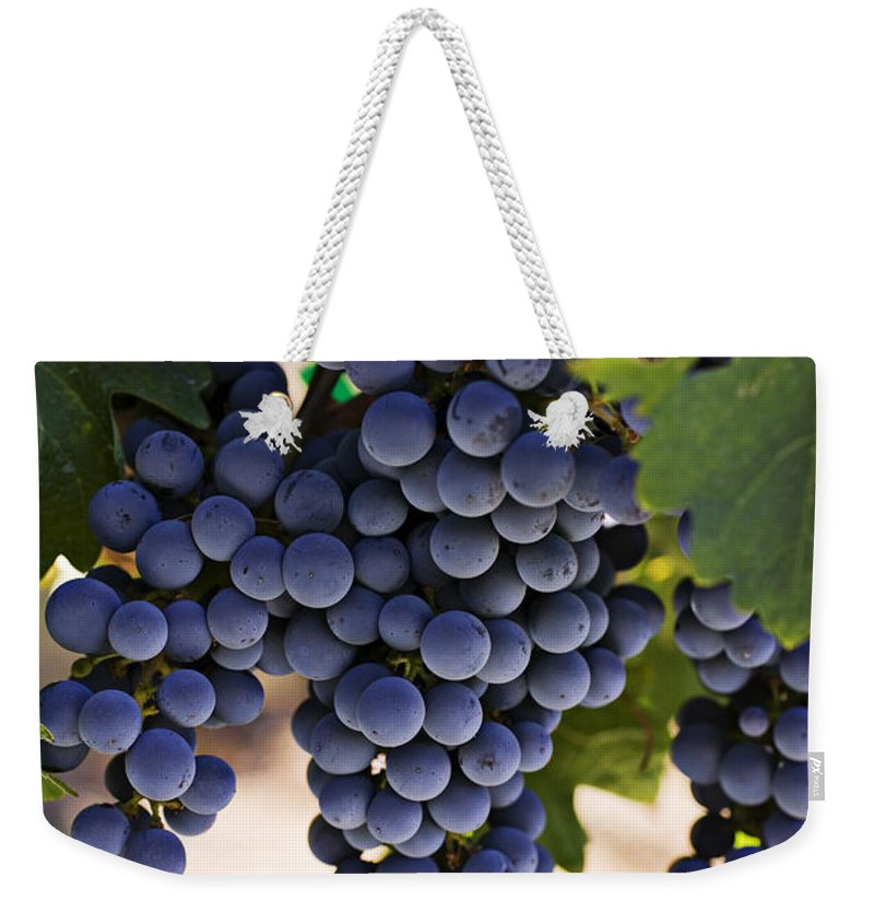 Sauvignon Weekender Tote Bag featuring the photograph Sauvignon Grapes by Garry Gay