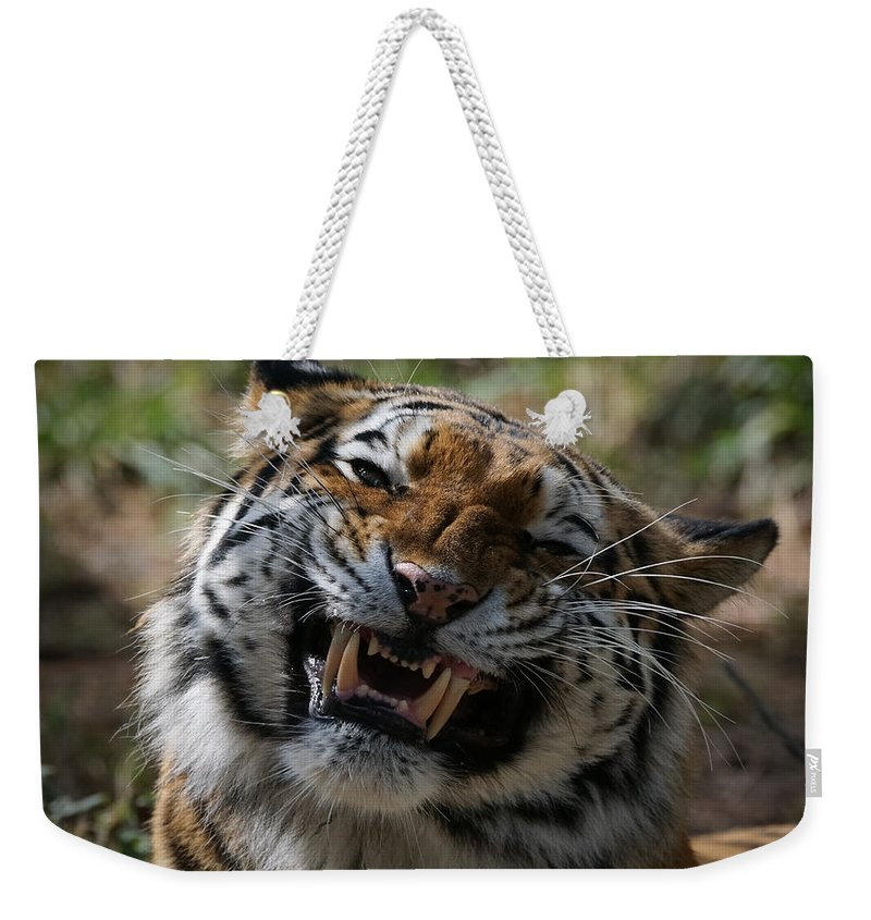 Tiger Weekender Tote Bag featuring the photograph Say Cheese by Ernie Echols