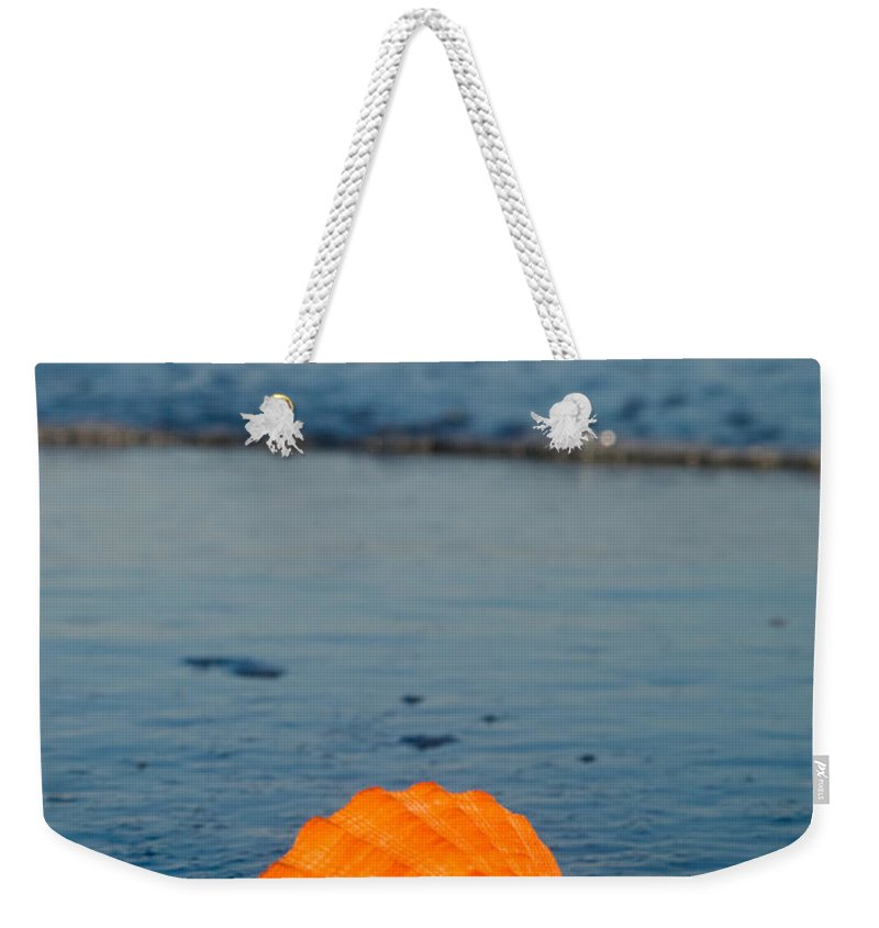 Scallop Weekender Tote Bag featuring the photograph Scallop Seashell On The Beach by Anthony Totah