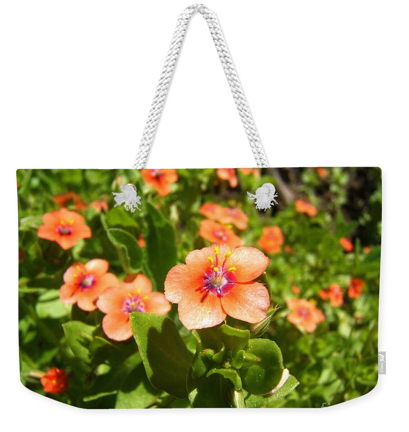 Artoffoxvox Weekender Tote Bag featuring the photograph Scarlet Pimpernel Flower Photograph by Kristen Fox