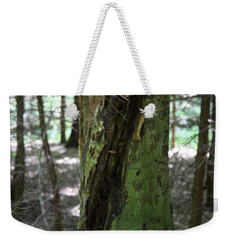 Tree Weekender Tote Bag featuring the photograph Scarred by Amanda Barcon