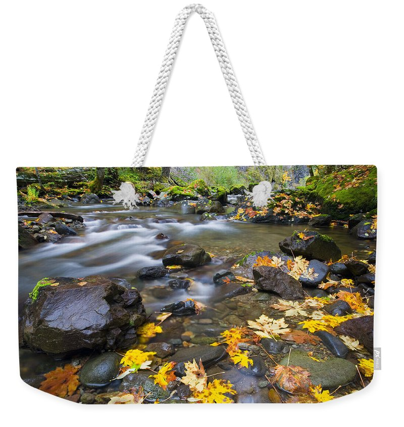Leaves Weekender Tote Bag featuring the photograph Scattered About by Mike Dawson