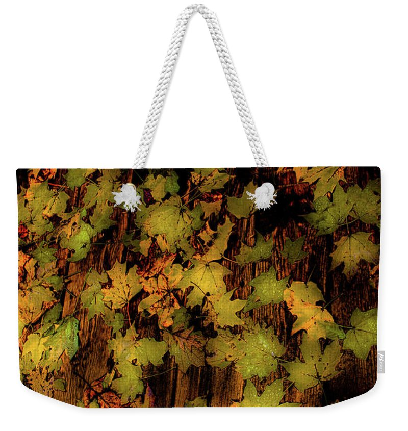 Vertical Weekender Tote Bag featuring the photograph Scattered by Donna Fonseca Newton