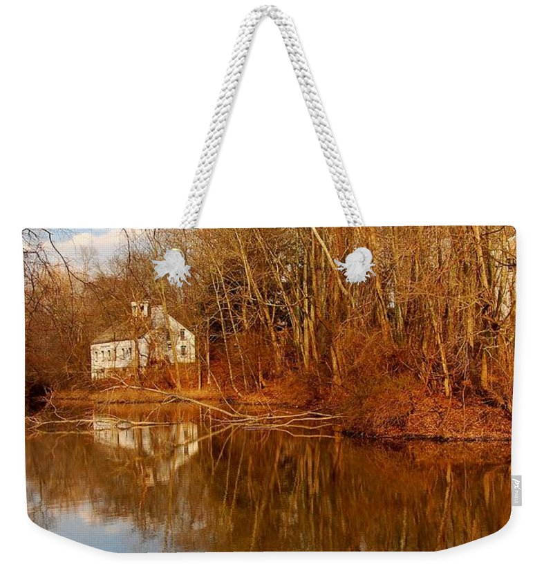 New Jersey Weekender Tote Bag featuring the photograph Scene In The Forest - Allaire State Park by Angie Tirado