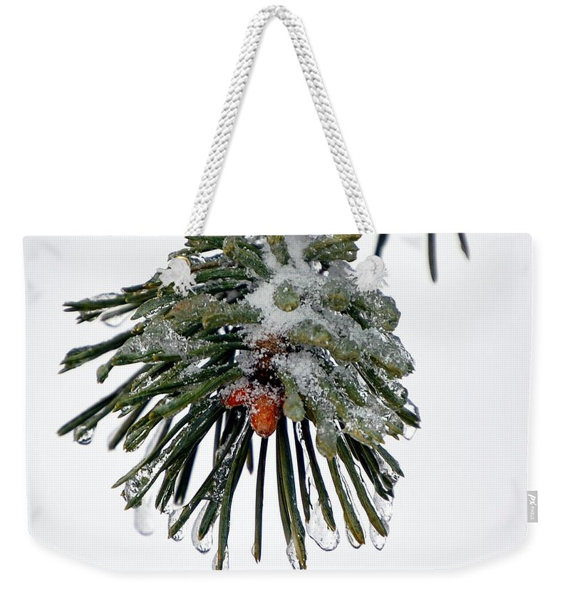 Winter Weekender Tote Bag featuring the photograph Scots Pine and Ice by Lisa Kane