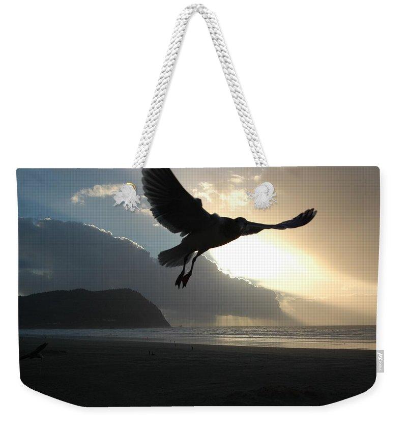 Seagull Weekender Tote Bag featuring the photograph Sea Bird 3 by Sara Stevenson