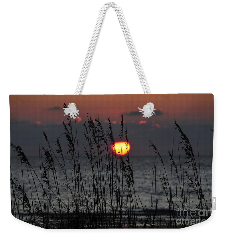 Sea Oats Weekender Tote Bag featuring the photograph Sea Oats by David Lee Thompson