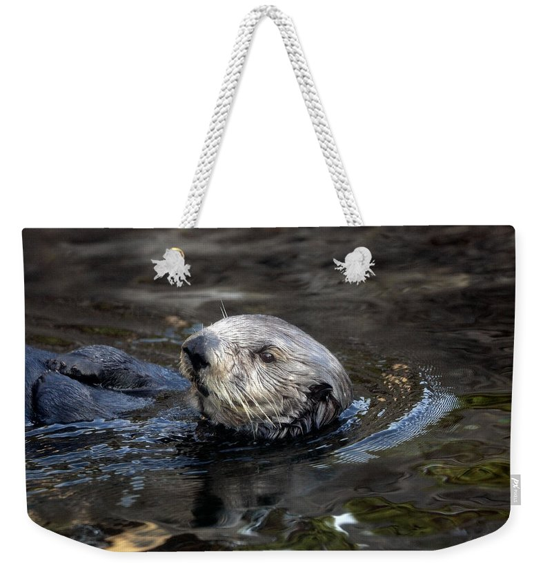 Sea Otter Weekender Tote Bag featuring the photograph Sea Otter by Randall Ingalls