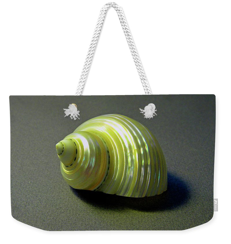 Frank Wilson Weekender Tote Bag featuring the photograph Sea Shell Turbo Marmoratus by Frank Wilson