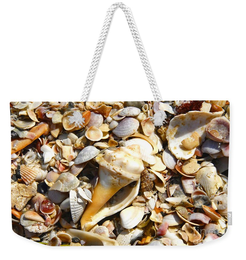 Florida Weekender Tote Bag featuring the photograph Sea Shells by David Lee Thompson