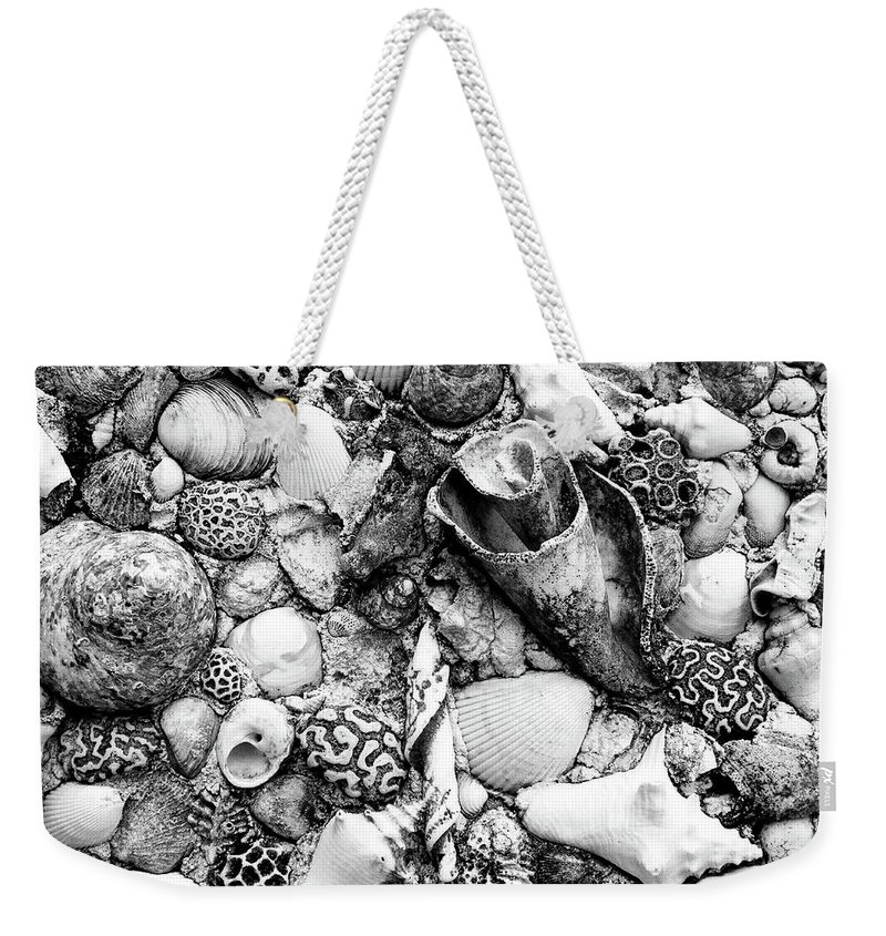 Nassau Weekender Tote Bag featuring the photograph Sea Shells - Nassau, Bahamas by Timothy Wildey