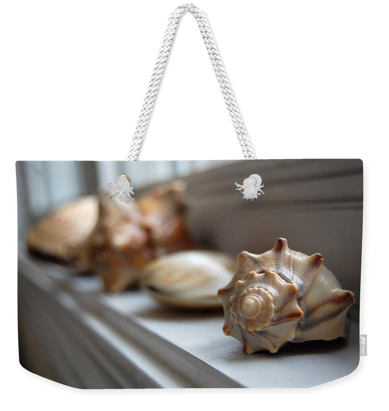 Seashells Weekender Tote Bag featuring the photograph Sea Shells by Robert Meanor