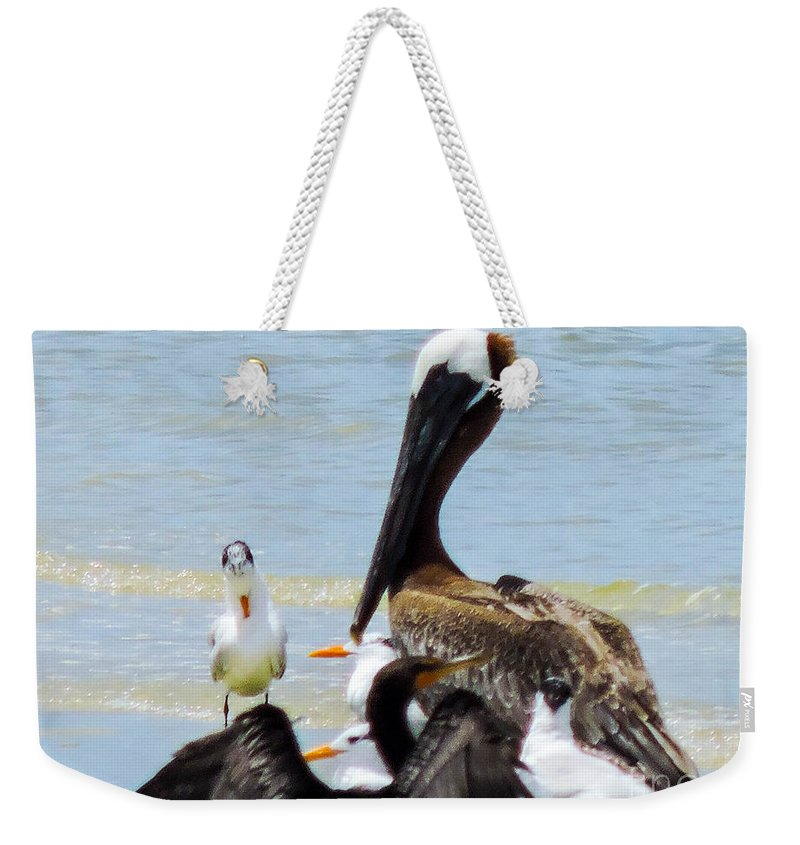 Shorebirds Weekender Tote Bag featuring the photograph Seafaring Trio by Marilee Noland