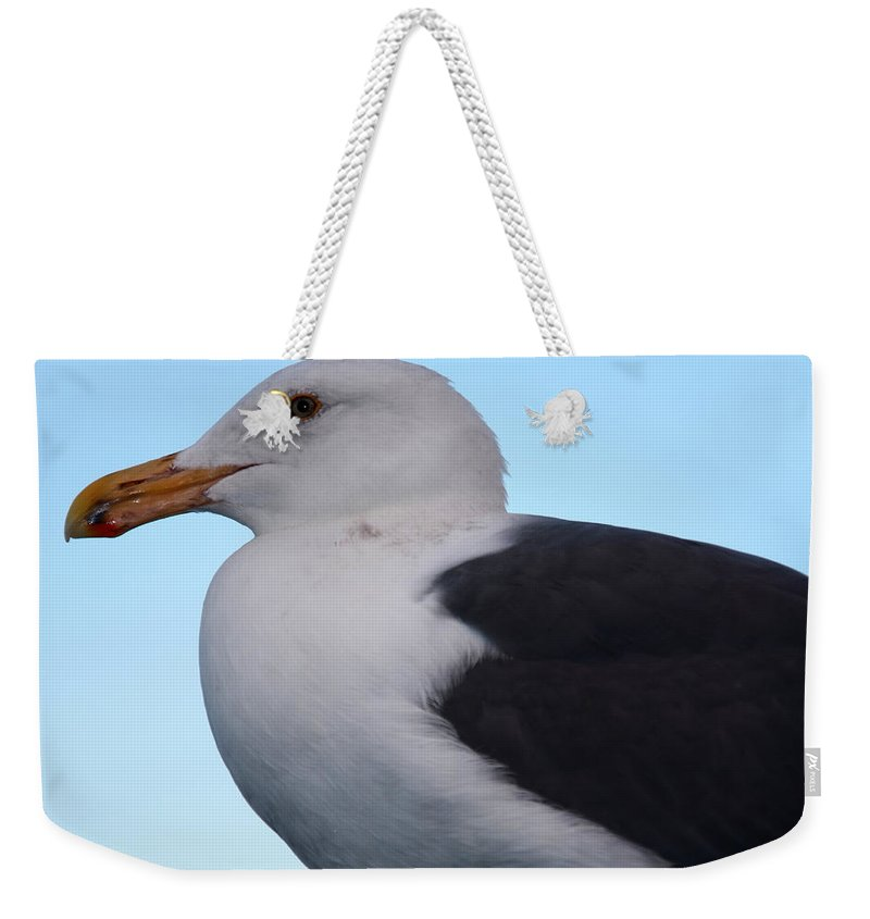 Birds Weekender Tote Bag featuring the photograph Seagull by Aidan Moran