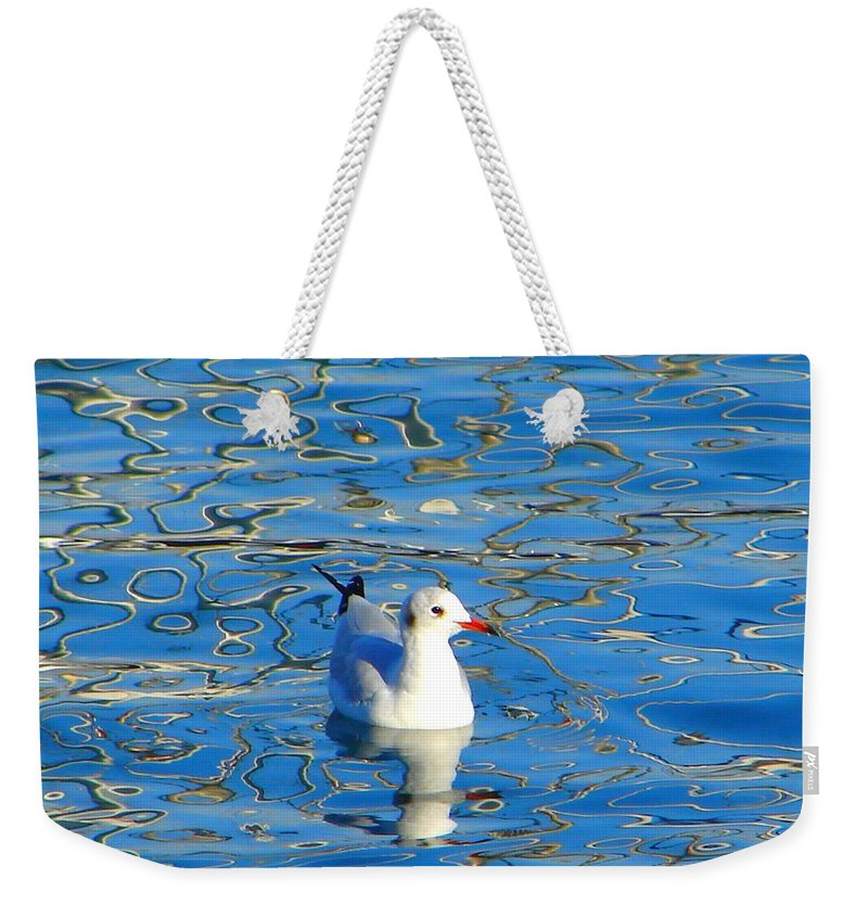 Seagull Weekender Tote Bag featuring the photograph Seagull by Ana Maria Edulescu