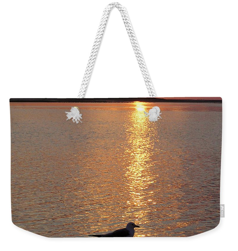 Seagull Weekender Tote Bag featuring the photograph Seagull At Sunset by Charles Harden