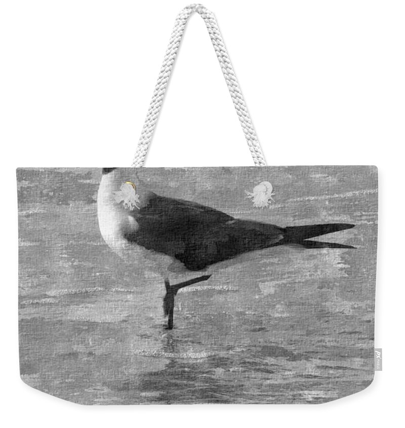 Bird Weekender Tote Bag featuring the digital art Seagull Black And White by Barb Montanye Meseroll