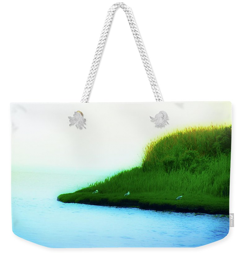 Seagull Weekender Tote Bag featuring the photograph Seagull Island by Bill Cannon