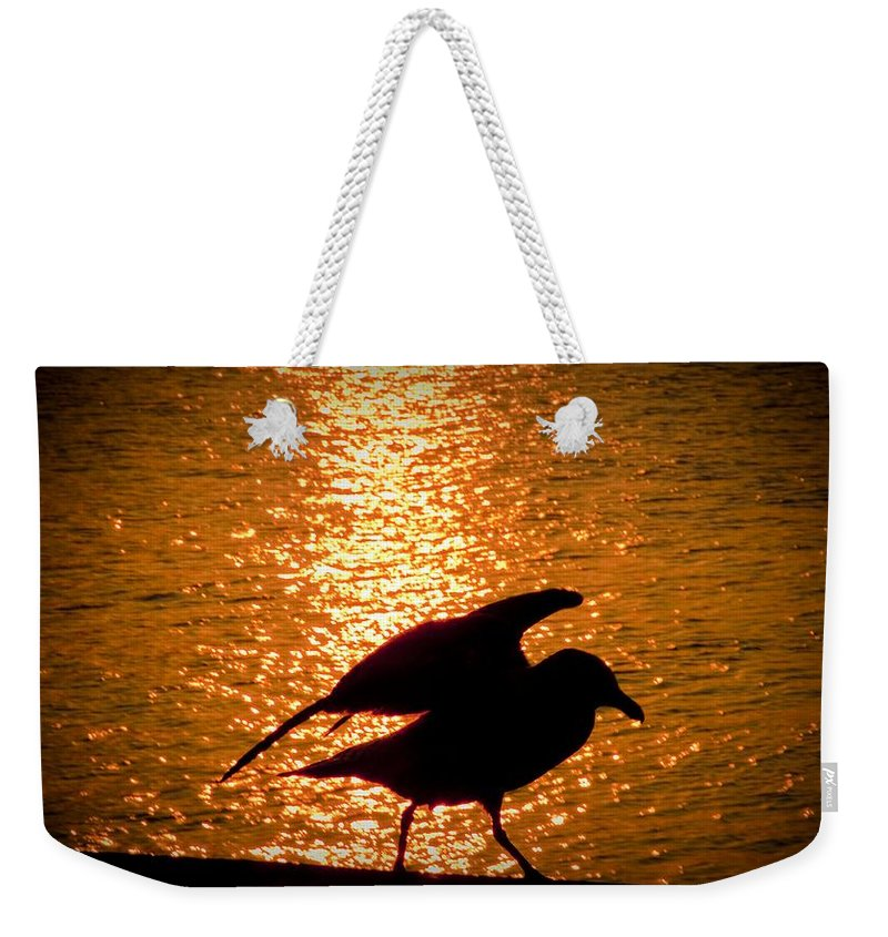 Seagull Weekender Tote Bag featuring the photograph Seagull Silhouette by Steven Natanson