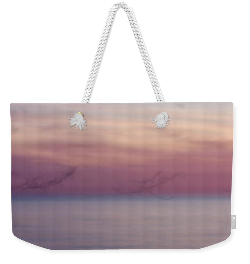 3scape Weekender Tote Bag featuring the photograph Seagulls In Motion by Adam Romanowicz