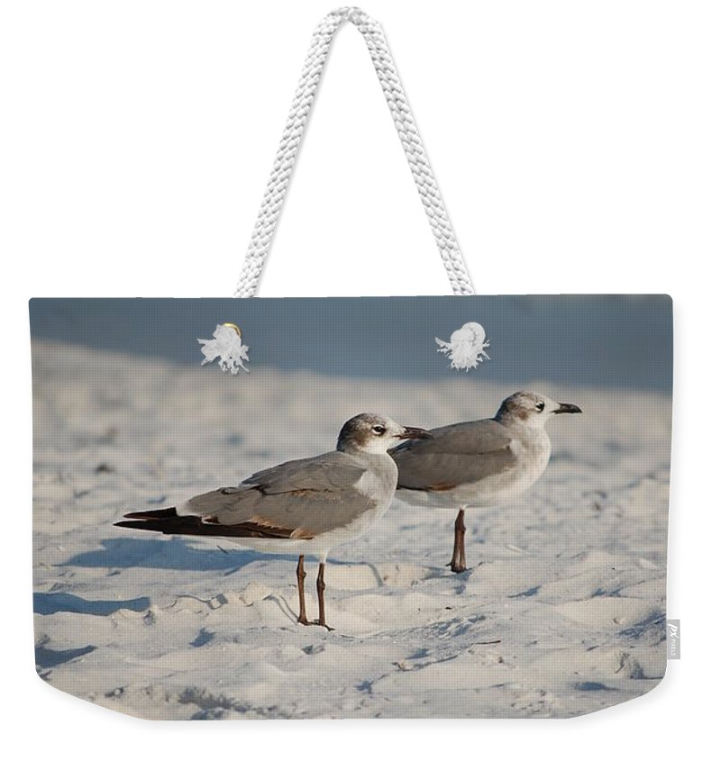 Seagulls Weekender Tote Bag featuring the photograph Seagulls by Robert Meanor