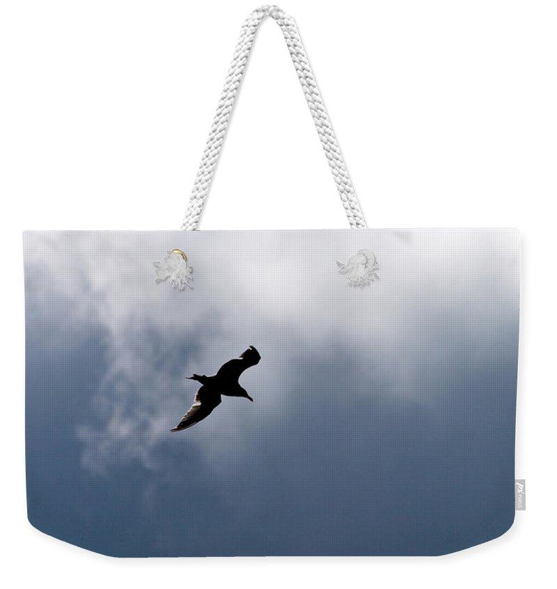 Lehtokukka Weekender Tote Bag featuring the photograph Seagull's Sky 1 by Jouko Lehto